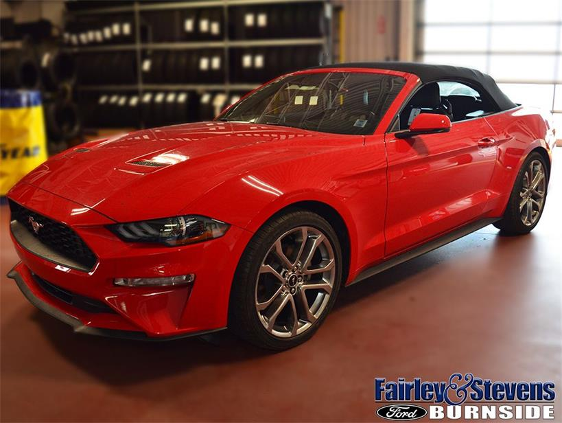 New 2019 Ford Mustang EcoBoost®-Premium 591