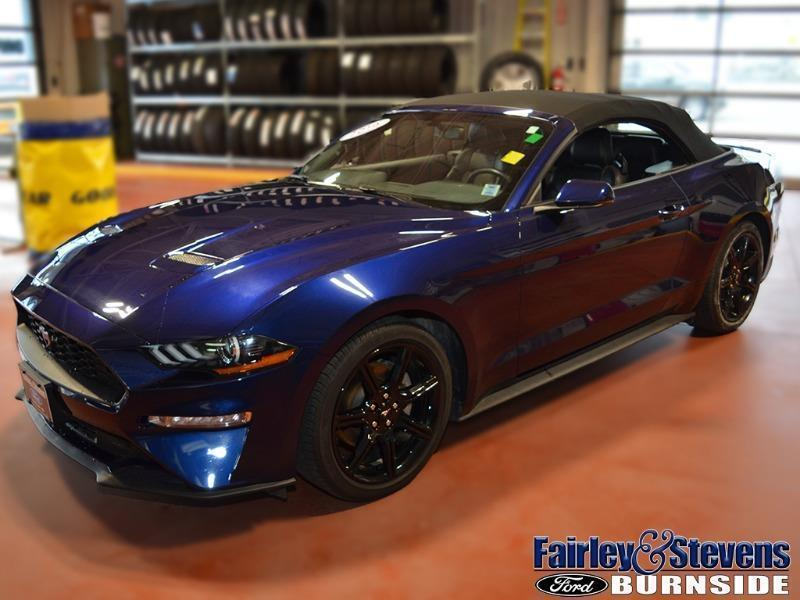 Used 2019 Ford Mustang EcoBoost-Premium P1549