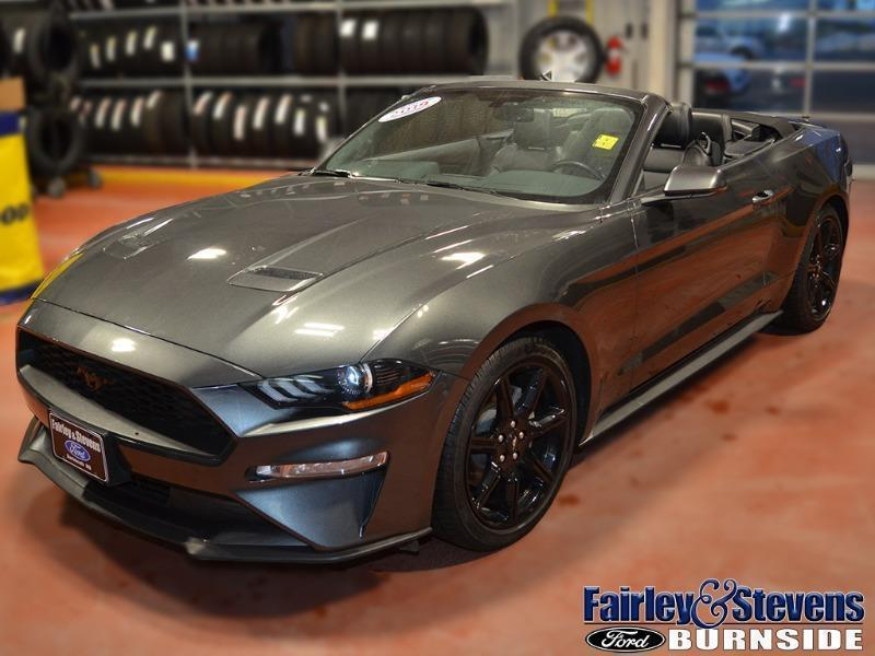 Used 2019 Ford Mustang EcoBoost-Premium P1555