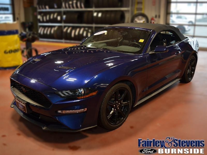 Used 2019 Ford Mustang EcoBoost-Premium P1559