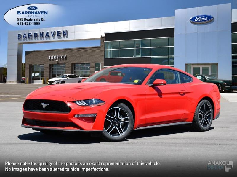 Used 2019 Ford Mustang EcoBoost M9183