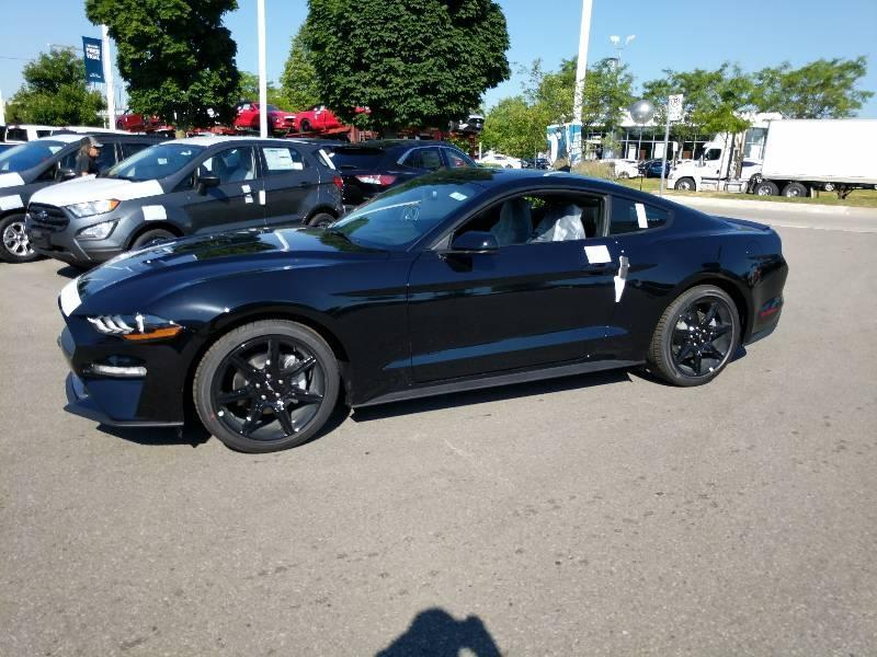 New 2020 Ford Mustang EcoBoost F201033