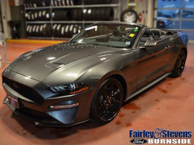 Used 2019 Ford Mustang EcoBoost-Premium P1548
