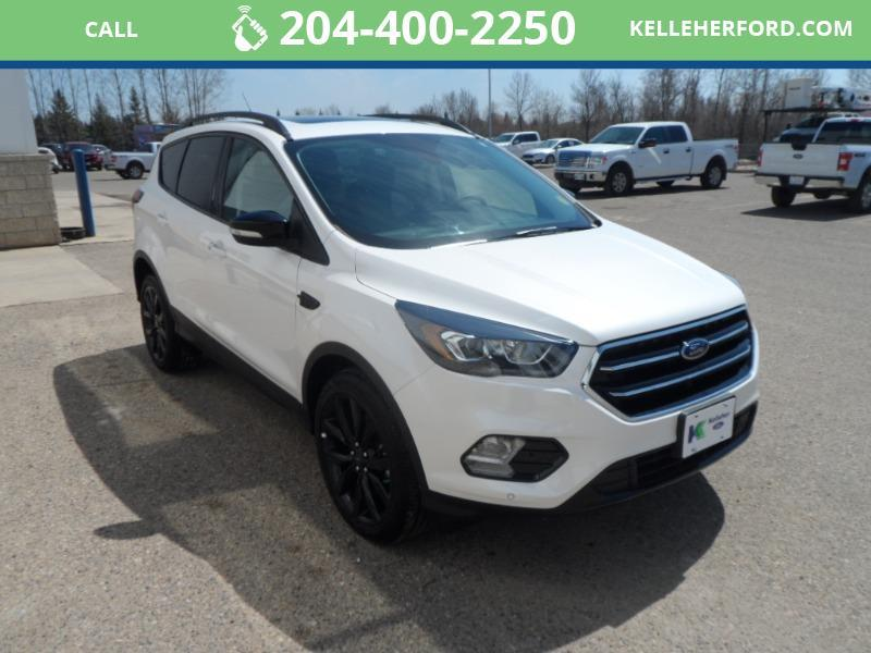 Used 2019 Ford Escape Titanium 172270