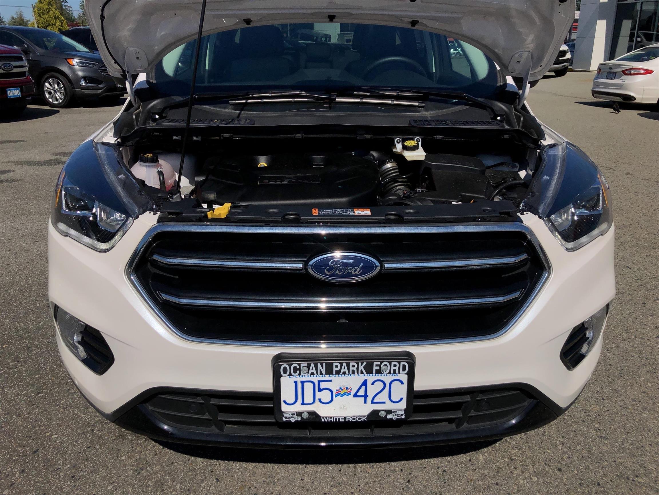 Used 2019 Ford Escape Titanium U9068