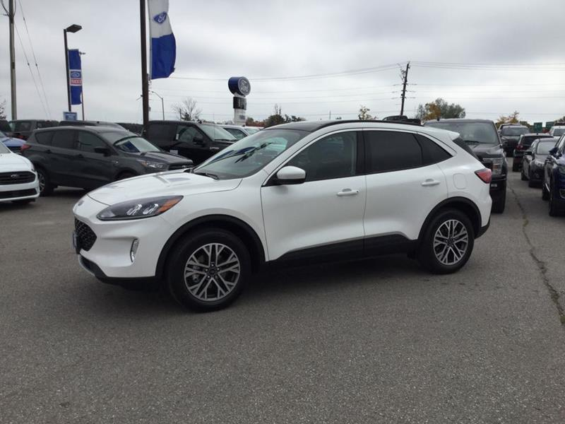 New 2020 Ford Escape SEL FN800